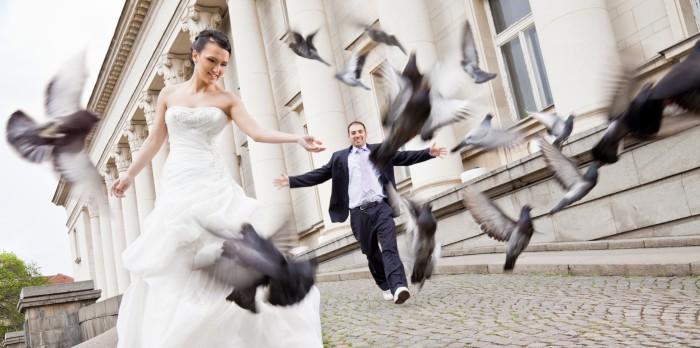 Отпуск на свадьбу по ТК РФ 2019 (в связи с бракосочетанием)